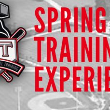 Spring Training Experience
